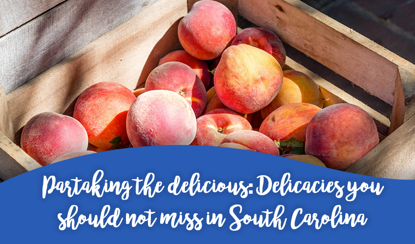 Partaking the Delicious: Delicacies You Should Not Miss in South Carolina
